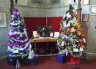 Nelson Cathedral Christmas Tree Festival